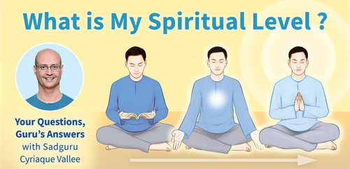 What is My Spiritual Level ? Your Questions, Guru's Answers